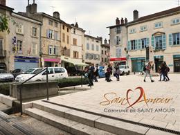 Renouvellement urbain_txt libre St Amour